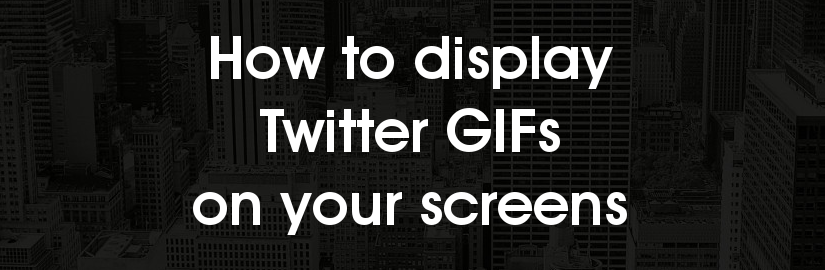 How to display Twitter GIFs on screens